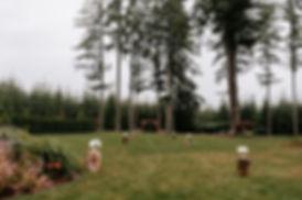 LewisWedding-Ceremony-1.JPG