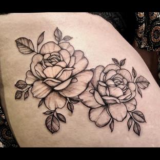rosen5.jpg