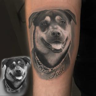 fietehund.jpg