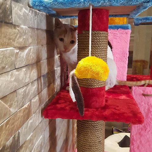 Mousey Singh
