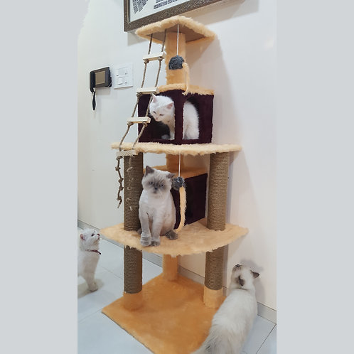 Capachinu Cat Tree Scratcher Condo House 5ft tall
