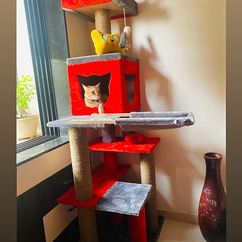 King Cat Tower 5ft condo scratcher without hammock