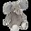 Thumbnail: Slonček siv