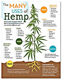 Many-Uses-of-Hemp-1.jpg