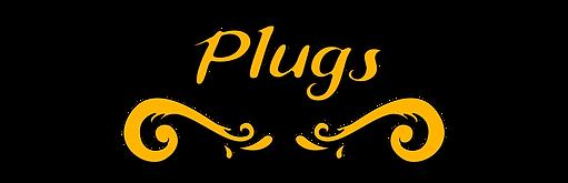 titre-plugs.png