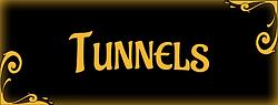 vignette-bijoux-piercing-tunnels.png