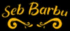 titre-seb-barbu.png