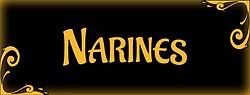vignette-bijoux-piercing-narines.png