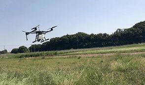 AGRI DRONE PHOTO
