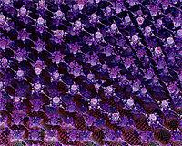 tiny purple fishes.jpg