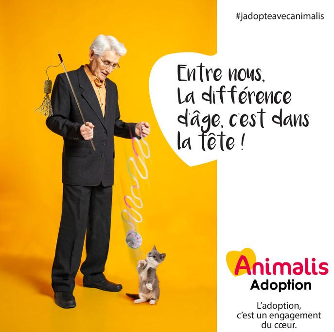 créa adoption 3.jpg