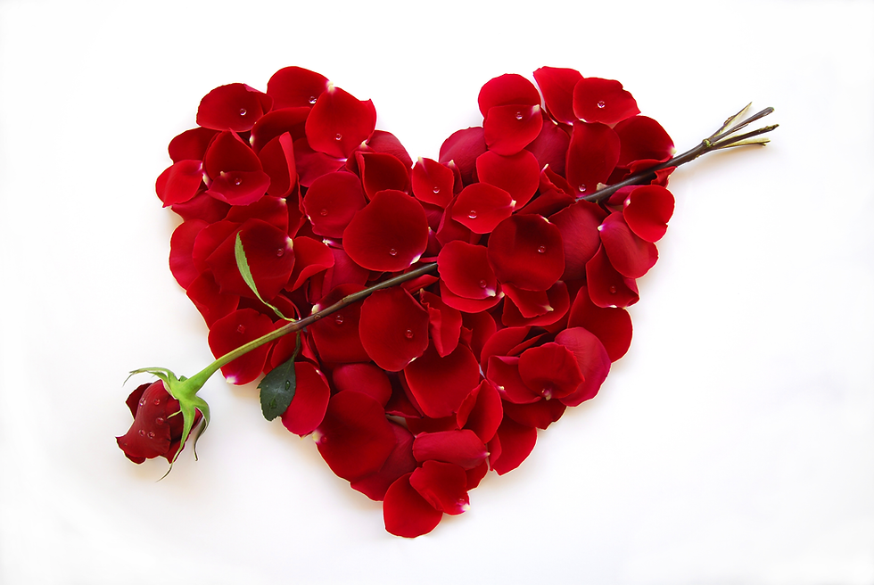 Red Valentine Heart Rose with arrow-1.pn