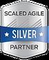 SAFe Silver Partner 2.png