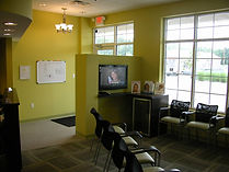 The Ortho Spot Office