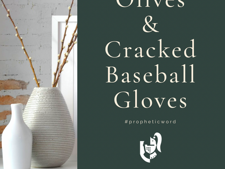 Olives And Baseball Gloves