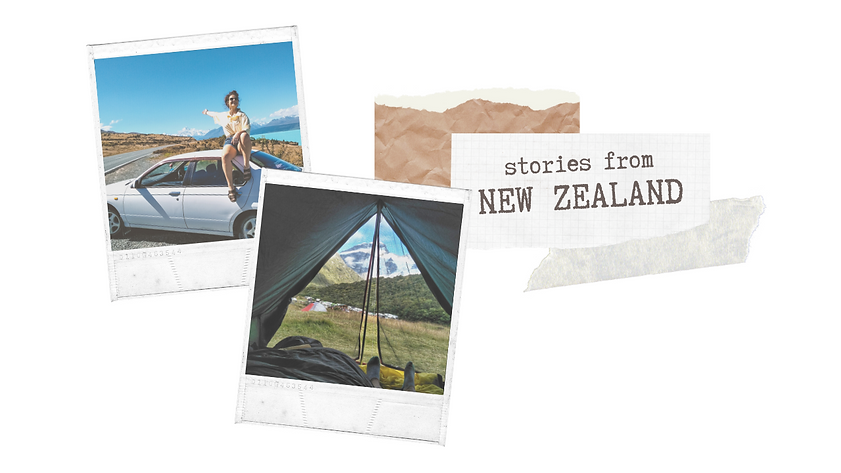 nz cover.png