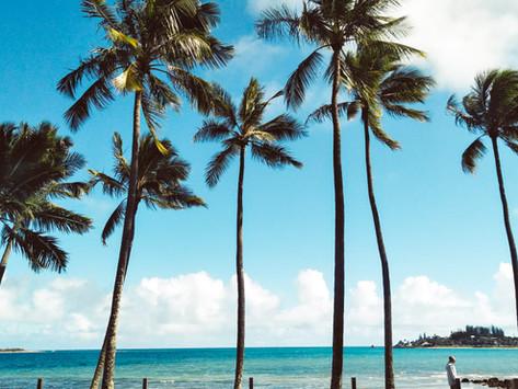 SOLO TRAVEL: NEW CALEDONIA