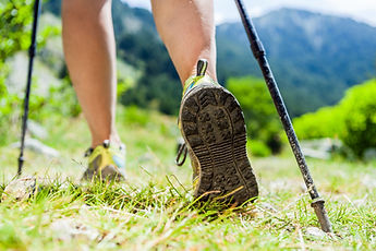 Nordic Walking Bewegung Theres Schaller