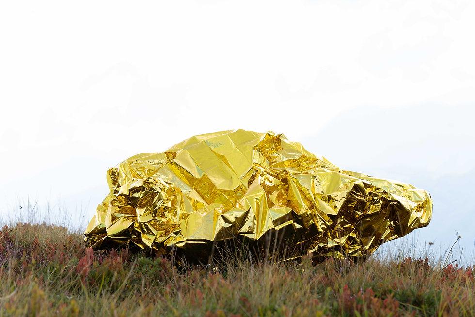 Golden Flow-44.jpg