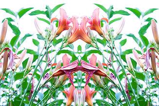 PicsArt_08-11-11.52.44.jpg