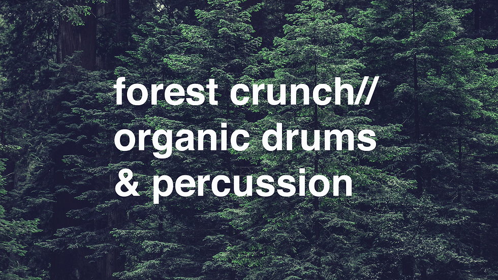 forest crunch// organic drums & percussion