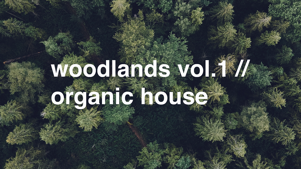 woodlands vol.1// organic house