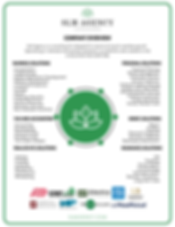 SLM Agency Overview.png