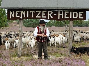 nemitzer-heidehaus_schäfer.jpg