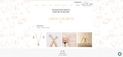 אביב מקס - עיצוב אתר