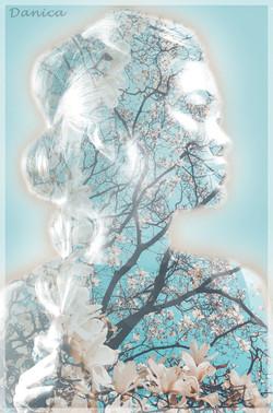 עיצוב תמונה - דנה עג'מי