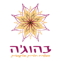 עיצוב לוגו - אביב עומרי שלייסר
