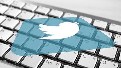 טוויטר | לוגו עם חיות | סטודי קורלי