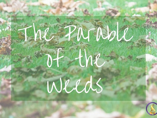 The Parable of the Weeds