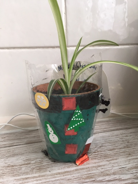 Decorated Christmas elf pot (green red gem buttons and black rim) in cellophane bag with stickers on.