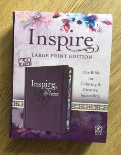 Photograph of Inspire Praise Journal Bible
