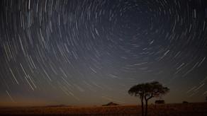 Juan Venter_Startrail-Tree.jpg