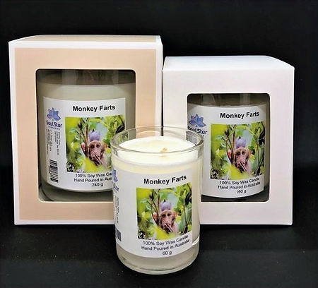 Monkey%20Farts%20Candle%20series_edited.