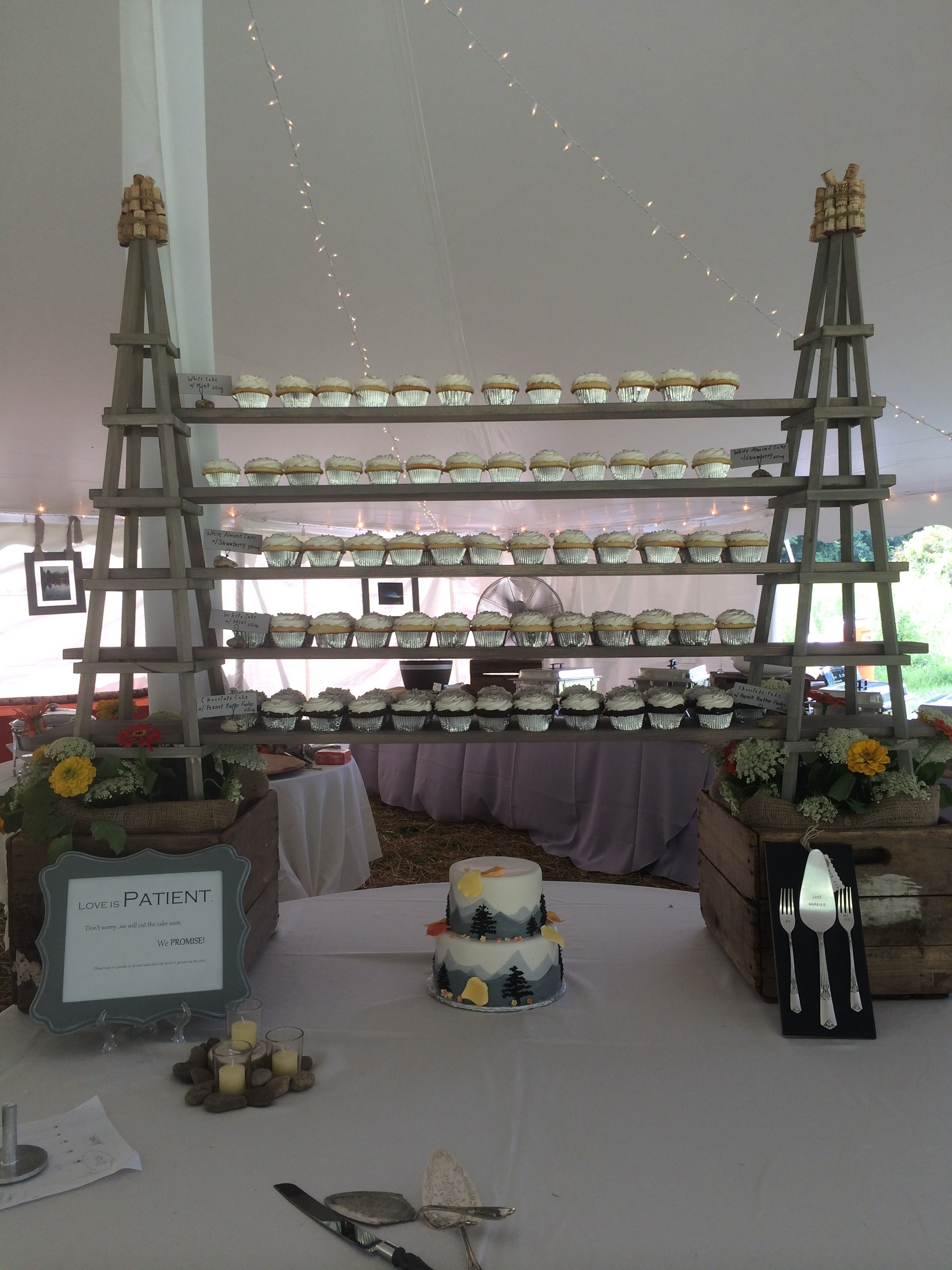 Wedding Cake wCupcakes28 Display