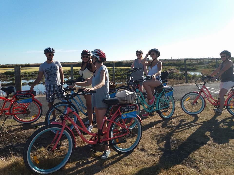 Ballade vélo à travers les marais