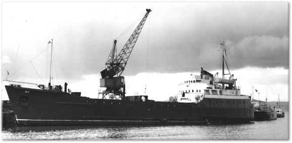 nave mercantile nasim