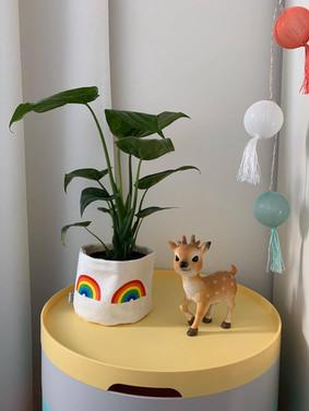 Rainbow Baski