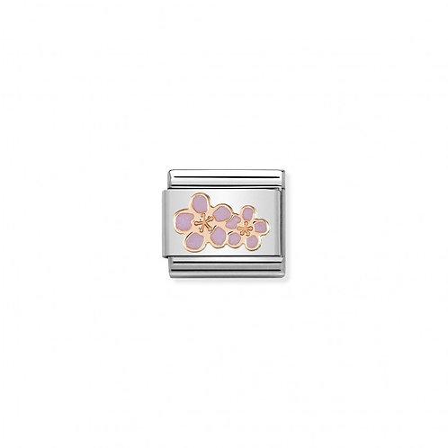 Link Nomination Peach Flowers
