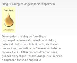 le blog de l'angelique du marais Poitevin