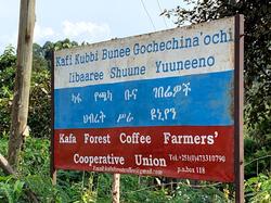 Ethiopie 8.png