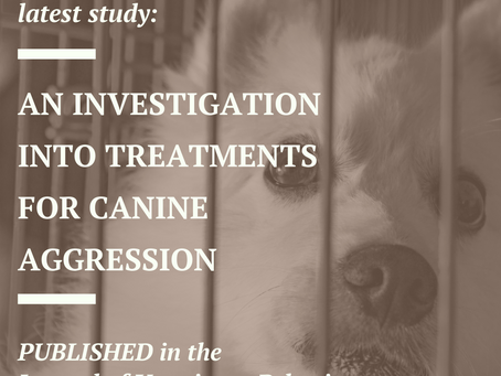 PUBLISHED: CCBS' Investigates Treatments of Canine Aggression