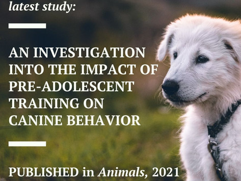 PUBLISHED: An Investigation into the Impact of Pre-Adolescent Training on Canine Behavior