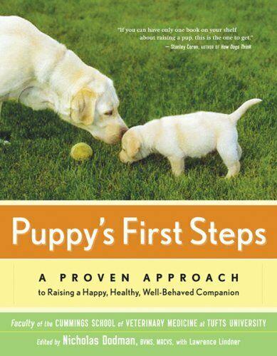 Puppys first steps.jpg