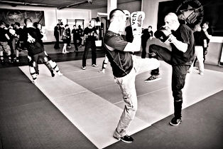 Stages perfectionnements krav maga OIS Paris