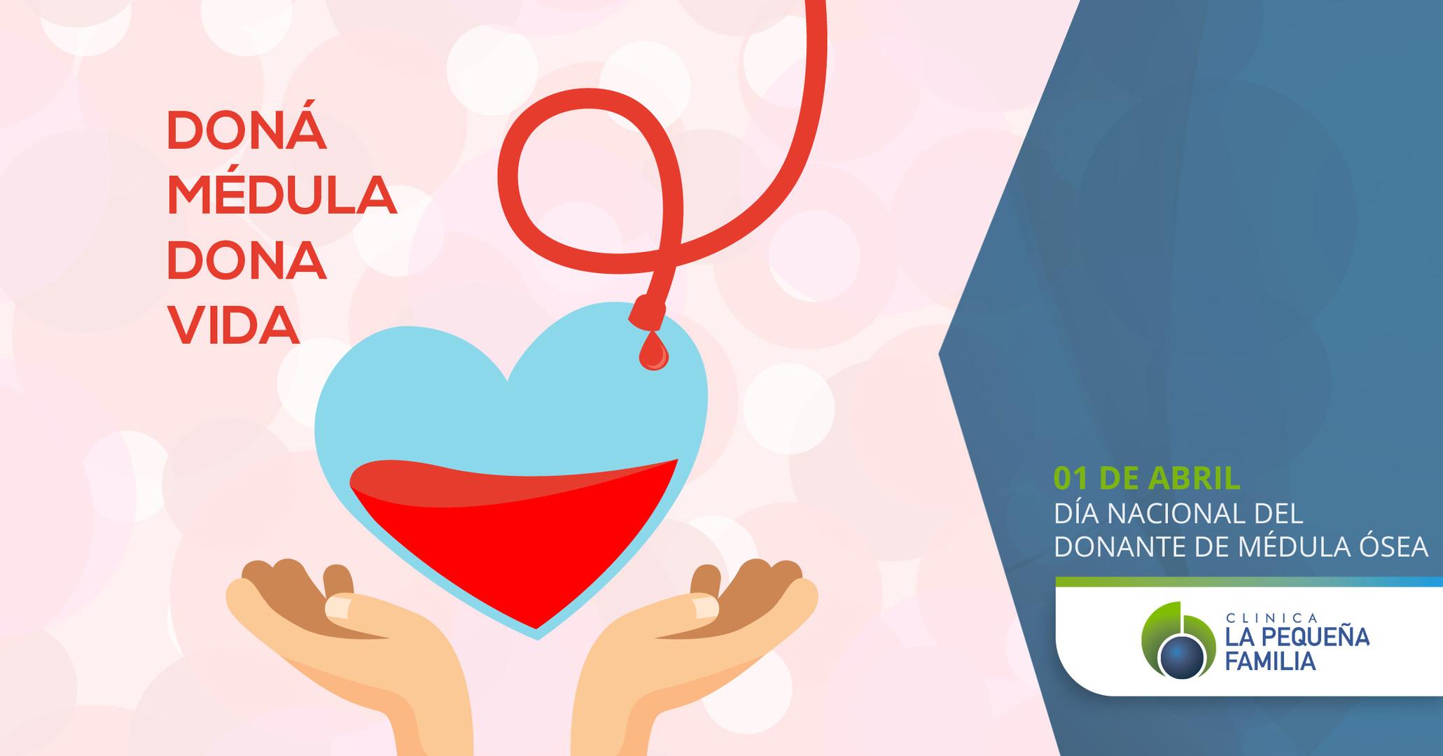 01/04 Día Nacional del Donante de Médula Ósea