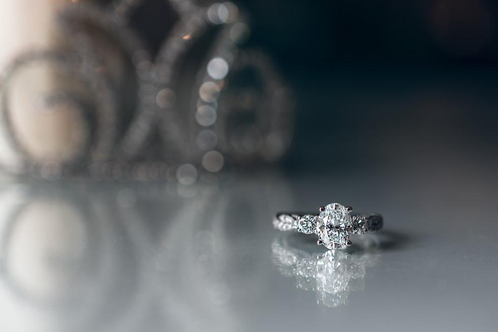 Proposal, Walt Disney World, Grand Floridian, Orlando, Florida